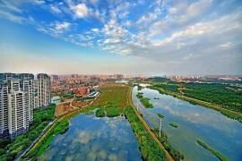 陽光城蘭園翡麗灣|香港高鐵45分鐘直達|香港銀行按揭
